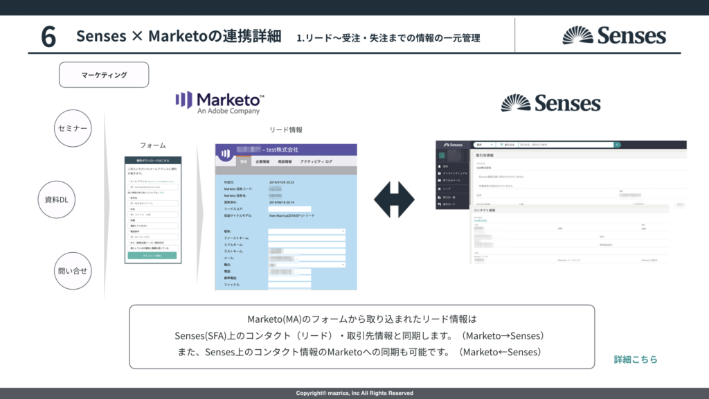 Senses_Marketo連携2