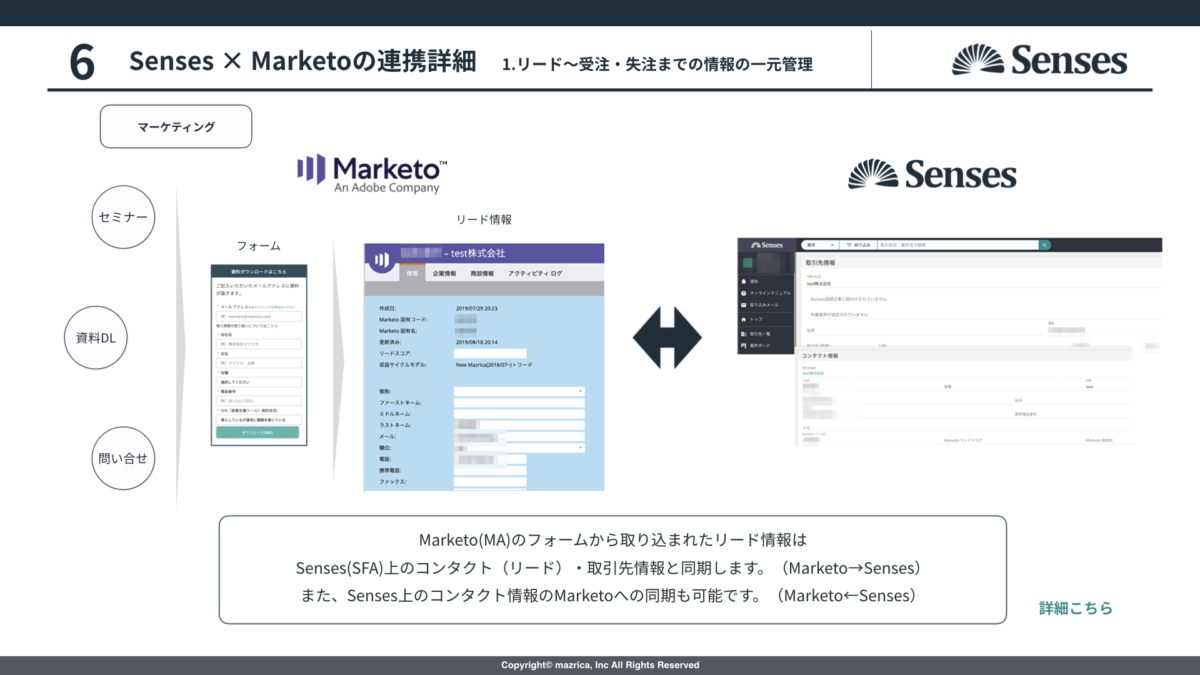 Senses_Marketo連携2